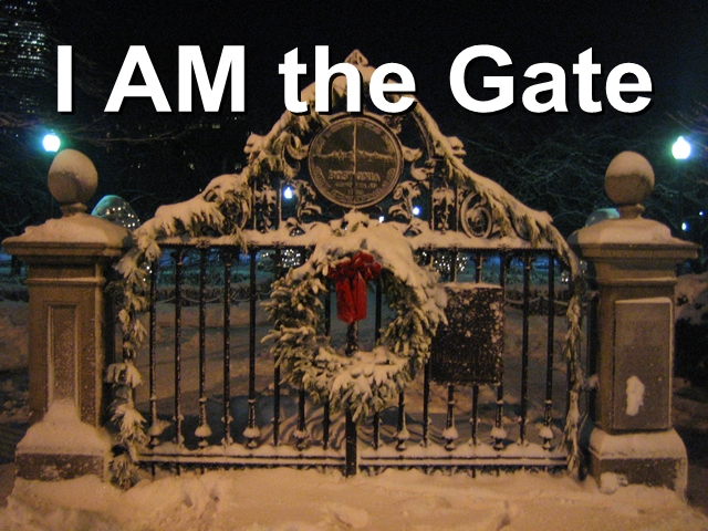 AM the Gate | The Life Project
